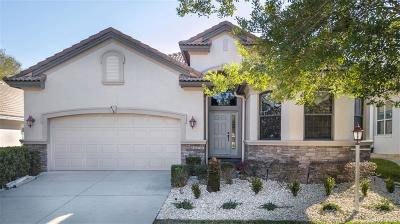 Citrus Hills - Terra Vista Single Family Home For Sale: 418 W Doerr Path