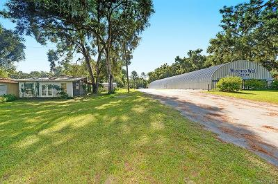 Citrus County Commercial For Sale: 6055 N Carl G Rose Highway