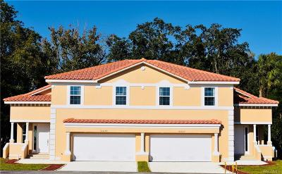 Homosassa Single Family Home For Sale: 10227 W Middleburg Loop #161