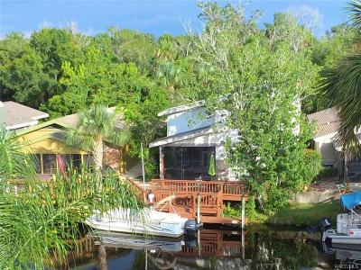 Homosassa Single Family Home For Sale: 5214 S Riverview Circle