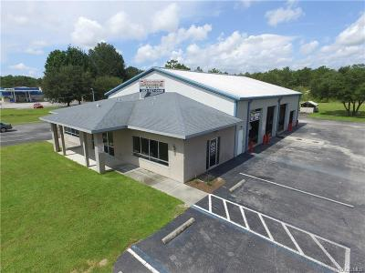 Citrus County Commercial For Sale: 5546 N Lecanto Highway