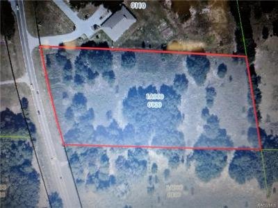 Citrus County Residential Lots & Land For Sale: 917 N Lecanto Highway