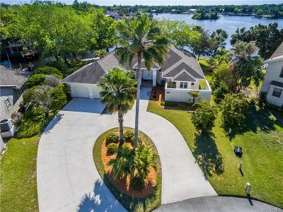 Homosassa, Dunnellon Single Family Home For Sale: 5327 S Riverside Drive