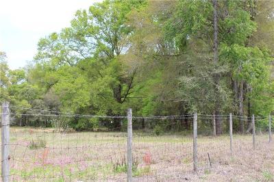 Dunnellon Residential Lots & Land For Sale: 8055 N Citrus Avenue