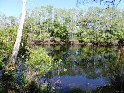 Dunnellon Residential Lots & Land For Sale: 1079 E Withlacoochee Trail