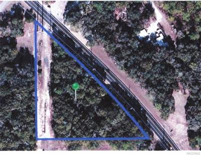 Dunnellon Residential Lots & Land For Sale: 11793 N Florida Avenue