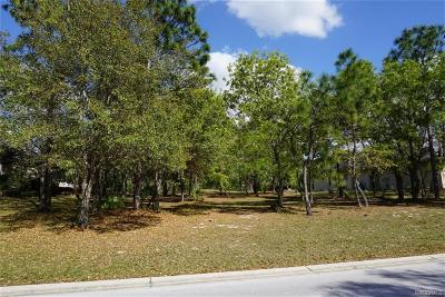 Residential Lots & Land For Sale: 3295 N Spyglass Village Path