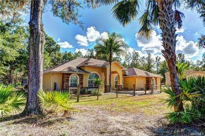 Crystal River Single Family Home For Sale: 8051 N Neige Point