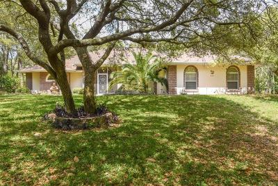 Hernando Single Family Home For Sale: 471 W Chase Street