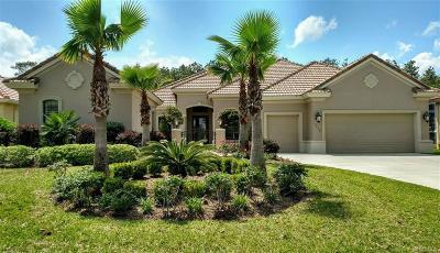Citrus Hills - Terra Vista Single Family Home For Sale: 1378 N Bellamy Point