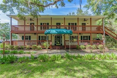 Homosassa, Dunnellon Commercial For Sale: 8551 W Miss Maggie Drive