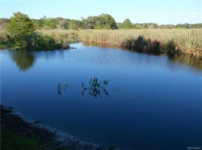 Citrus County Residential Lots & Land For Sale: 1113 S Fir Terrace
