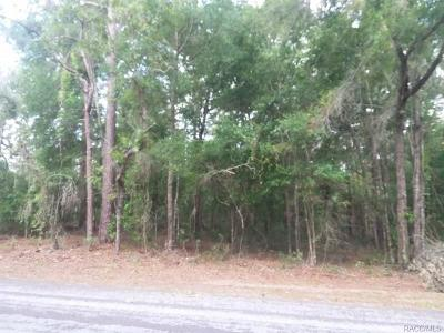 Floral City Residential Lots & Land For Sale: 12180 S Elm Point
