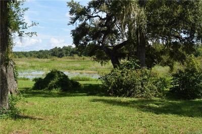 Floral City Residential Lots & Land For Sale