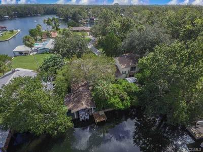 Homosassa Single Family Home For Sale: 4216 S Marva Terrace