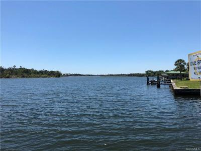 Crystal River Residential Lots & Land For Sale: 1300 NW 19th Court