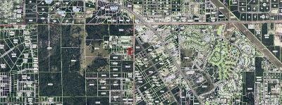 Citrus County Residential Lots & Land For Sale: 7043 W Cottage Lane