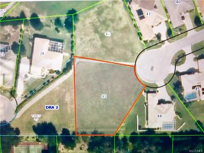 Citrus County Residential Lots & Land For Sale: 515 W Mickey Mantle Path