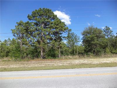 Citrus County Residential Lots & Land For Sale: 5937 N Elkcam Boulevard