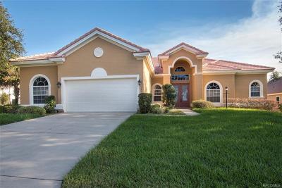 Hernando FL Single Family Home For Sale: $349,000