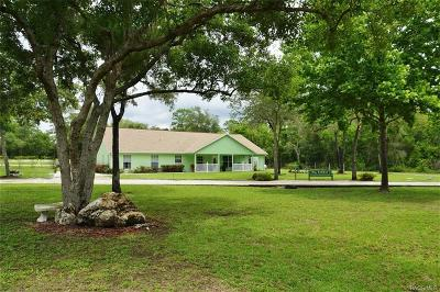 Lecanto Single Family Home For Sale: 575 W Sharp Lane