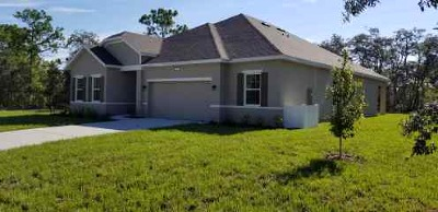Homosassa Single Family Home For Sale: 38 Lupine Street