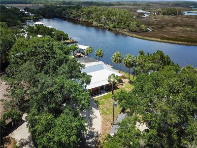 Homosassa, Dunnellon Single Family Home For Sale: 6900 S Pinebranch Point