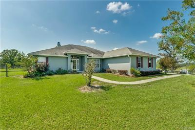Dunnellon Single Family Home For Sale: 13590 SE 127th Place