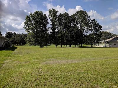 Hernando Residential Lots & Land For Sale: 307 W Redsox Path