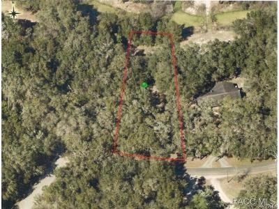 Residential Lots & Land For Sale: 3579 E Lake Nina Drive