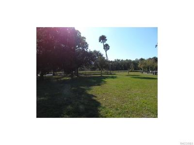 Crystal River Residential Lots & Land For Sale: 1019 N Kings Circle Point