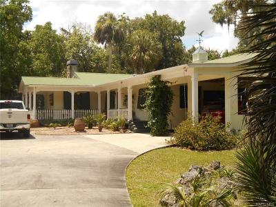 Levy County Single Family Home For Sale: 60 Young Drive