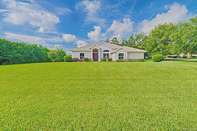 Hernando Single Family Home For Sale: 484 W Massachusetts Street
