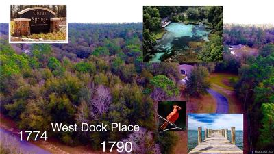 Citrus Springs Residential Lots & Land For Sale: 1790 W Dock Place