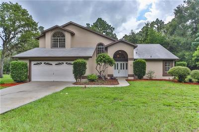 Lecanto FL Single Family Home For Sale: $299,900