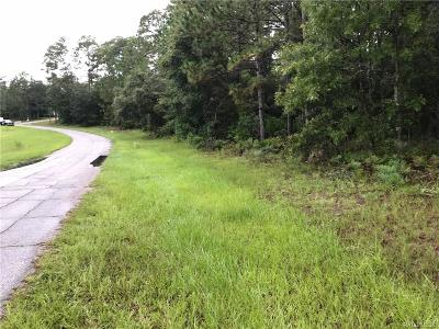 Residential Lots & Land For Sale: 5392 N Persimmon Drive