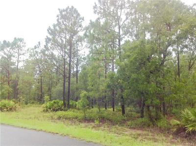 Citrus County Residential Lots & Land For Sale: 16 Black Willow Court S