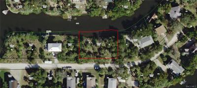 Crystal River Single Family Home For Sale: W 12051