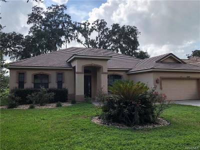 Hernando Single Family Home For Sale: 1133 W Beagle Run Loop