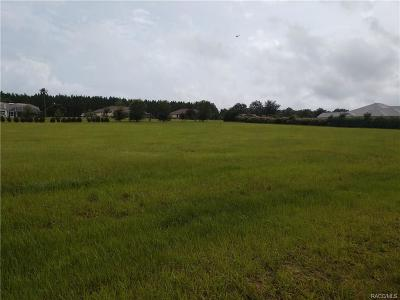 Hernando Residential Lots & Land For Sale: 626 E Bismark Street