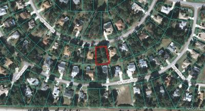 Residential Lots & Land For Sale: 9776 SW 196th Circle