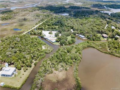 Citrus County Commercial For Sale: 1650 Fishcreek