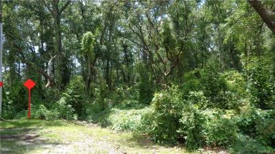 Lecanto Residential Lots & Land For Sale
