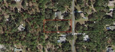 Hernando Residential Lots & Land For Sale: 162 N Indianapolis Avenue
