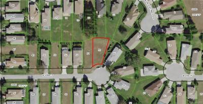 Lecanto Residential Lots & Land For Sale: 1847 W Jena Court