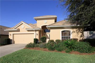 Hernando Single Family Home For Sale: 983 W Skyview Landings Drive #21A