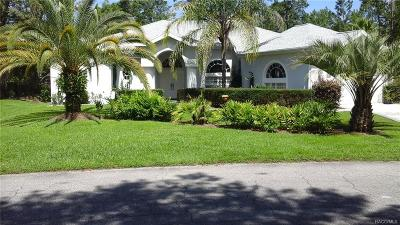 Homosassa Single Family Home For Sale: 23 Geranium Court