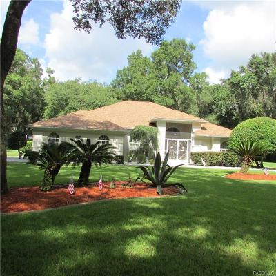 Hernando Single Family Home For Sale: 4272 N Forest Lake Drive
