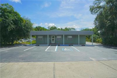 Citrus County Commercial For Sale: 3287 S Florida Avenue