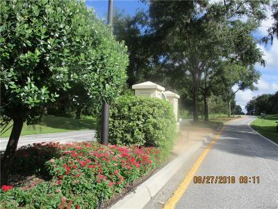 Hernando Residential Lots & Land For Sale: 3134 E Brigadoon Court